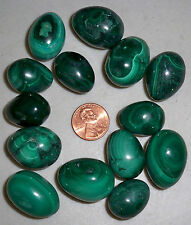 """WHOLESALE PRICE"" ON ONE CARVED & POLISHED RARE MALACHITE EGG"