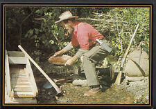 Canada Postcard - Searching For Gold, Goldpanning, British Columbia B2296