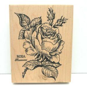 """PSX Designs K-023 Rosa Rose Rosaceae Flower Wooden Rubber Stamp 3.5"""" x 4.5"""" 1992"""