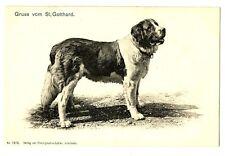 CPA Suisse Zürich Gruss vom St Gottard Souvenir du Saint-Gothard chien