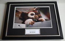 Joe Dante SIGNED FRAMED Photo Autograph 16x12 display Gremlins Film AFTAL & COA