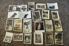 Lot of Vintage Photographs Mostly Circa 1940s-60s Dogs Women Pets Various 6