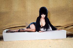 "Elvira ""Mistress of Darkness"" Tabletop Display Standee 10 1/2"" Long"