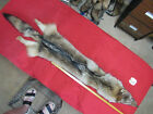 coyote pelt professionally tanned good leather thick soft good color fur