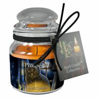 Spell Candle Prosperity by Lisa Parker with Spell - Jasmine Scented