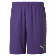 Puma Sport Football Soccer TeamGoal 23 Mens Knit Training Shorts Violet