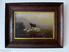 Antikes Ölbild  Hochland Rinder Longhorn Highlander Stier   sign. Oldham Hart