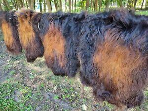 Real Eco Island Lambskin Sheepskin Fur Long Wool Schwarz-Goldbraun