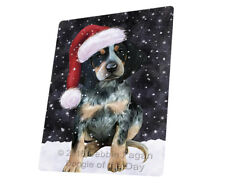 Let it Snow Christmas Bluetick Coonhound Dog Woven Throw Sherpa Blanket T367