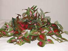 9x8 LG Silk Pink/Green COLEUS VINE/BUSH Artificial Aquarium PLANT w/ stone base