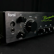 Bergantino Forte 700 Watt Digital Bass Amplifier Head