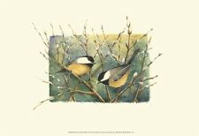 Chickadees and Pussy Willow Art Poster Print by Janet Mandel, 19x13