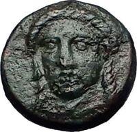 GRYNION or Gyrneion Aeolis 306BC Apollo Shell RARE Ancient Greek Coin i58397