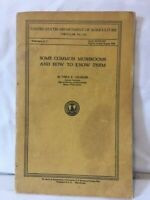 Vtg US Dept of Agriculture SOME COMMON MUSHROOMS AND HOW TO KNOW THEM Charles