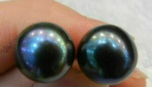 Exquisite AAA 11-12mm South Sea Black Pearl Stud Earrings 14k Gold
