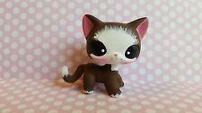 Sweet Caroline Brown Short Hair Cat * OOAK Hand Painted Custom Littlest Pet Shop
