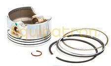 Briggs & Stratton 793318 Piston Assembly Replaces # 791813, 697693