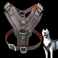 Large Dog Harness Genuine Leather Heavy Duty Strong Chest Harness for Pit Bull