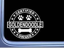 "Certified Goldendoodle L311 Dog Sticker 6"" decal"