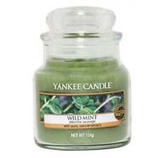 Candele e lumini verdi marca Yankee Candle per la decorazione della casa menta