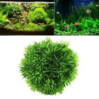 Marimo Ball Aquarium Aquatic Plants Fish Shrimp Tank Pet H0G9