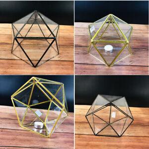 Handmade Pentagon Triangles Irregular Glass Vase Pot Geometric Terrarium Moss