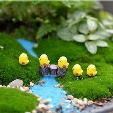 5Pcs Cute Mini Figurines Miniature Chick Animal Resin Crafts Ornament