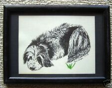 Shaggy Dog Small Print in 5x7 Ready for Framing