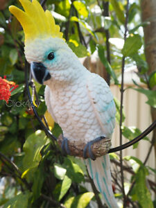 2 x 34cm Cockatoo Parrot Australian Native Bird on Hanging Swing Ring parrot