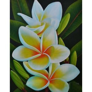 5D Flower Diamond Painting Kits Full Drill Art Embroidery Decors DIY Presents
