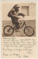 1931 German Chimpanzee on Bicycle Postcard - Luftpost Postmark