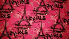 LINED VALANCE 42X15 LOVE PAIRS FOREVER HEART EFFIEL TOWER FANCE TRAVEL
