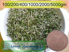Broccoli Sprout seeds Organic Certified (Sprouts , Sprouting seeds) 0.1-5kg