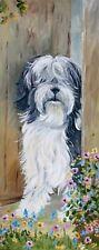 More details for tibetan terrier dog new original oil painting sandra coen artist canvas