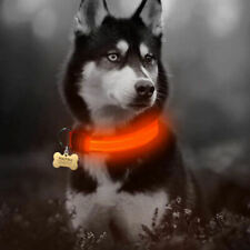LED Flashing Dog Collar,in Red for Larger sized dogs