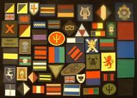 Army Corps TRF Regiment TRF Unit TRF Tactical Recognition Combat Flash TRF Badge
