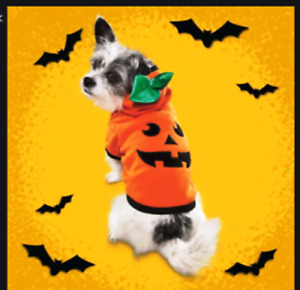 Bootique Cat or Dog Pumpkin Hoodie XS