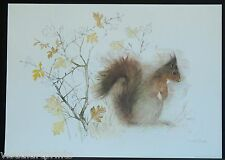 Mads Stage, Squirrel, Ekorre, Danish Artist-Swedish Art Print, 1976.
