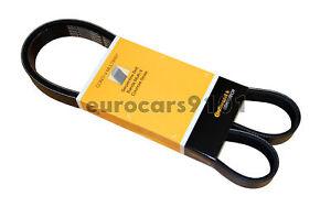 New! Mercedes-Benz C230 Continental Supercharger Belt 6K1330 0119975892