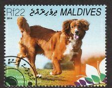 Nova Scotia Duck Tolling Retriever * Int'l Postage Stamp Art *Toller Gift Idea*