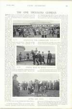 1896 Horse Race The Late Col North 1000 Guineas Thais
