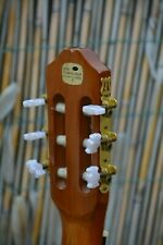 Guitare guitar Concert Guitare