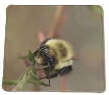 """Macro Bumble Bee scenic Country COMPUTER MOUSE PAD 9 X 7"""" USA Great gift"""