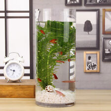 Betta Fish Bowl Goldfish Round Clear Glass Tank with Sand Artificial Grass