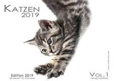 Katzenkalender 2019 - Wandkalender A4