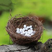 Natürliche Pflanzen Vogel Nest Mini Harz Vogel Eier Mode Home Dekor Handwerk
