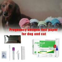 Pets Pregnancy Test Paper Strip Fetation Veterinaria Disposable Dog T1Y5 N4G0