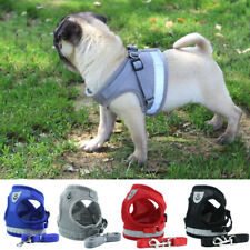 Reflective Dog Harness Leash Set Breathable Mesh Small Dogs Chest Strap XS-XL