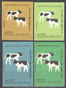 POLAND 1965 Matchbox Label - Cat.Z#583 set Deal, young slaughter cattle - calves
