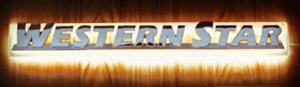 Western Star LED Side Bonnet Badge Back Light - Amber ( Light Only)